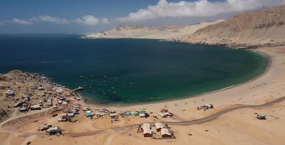 Proyecto acuícola minero inició producción de especies marinas en costa de Taltal