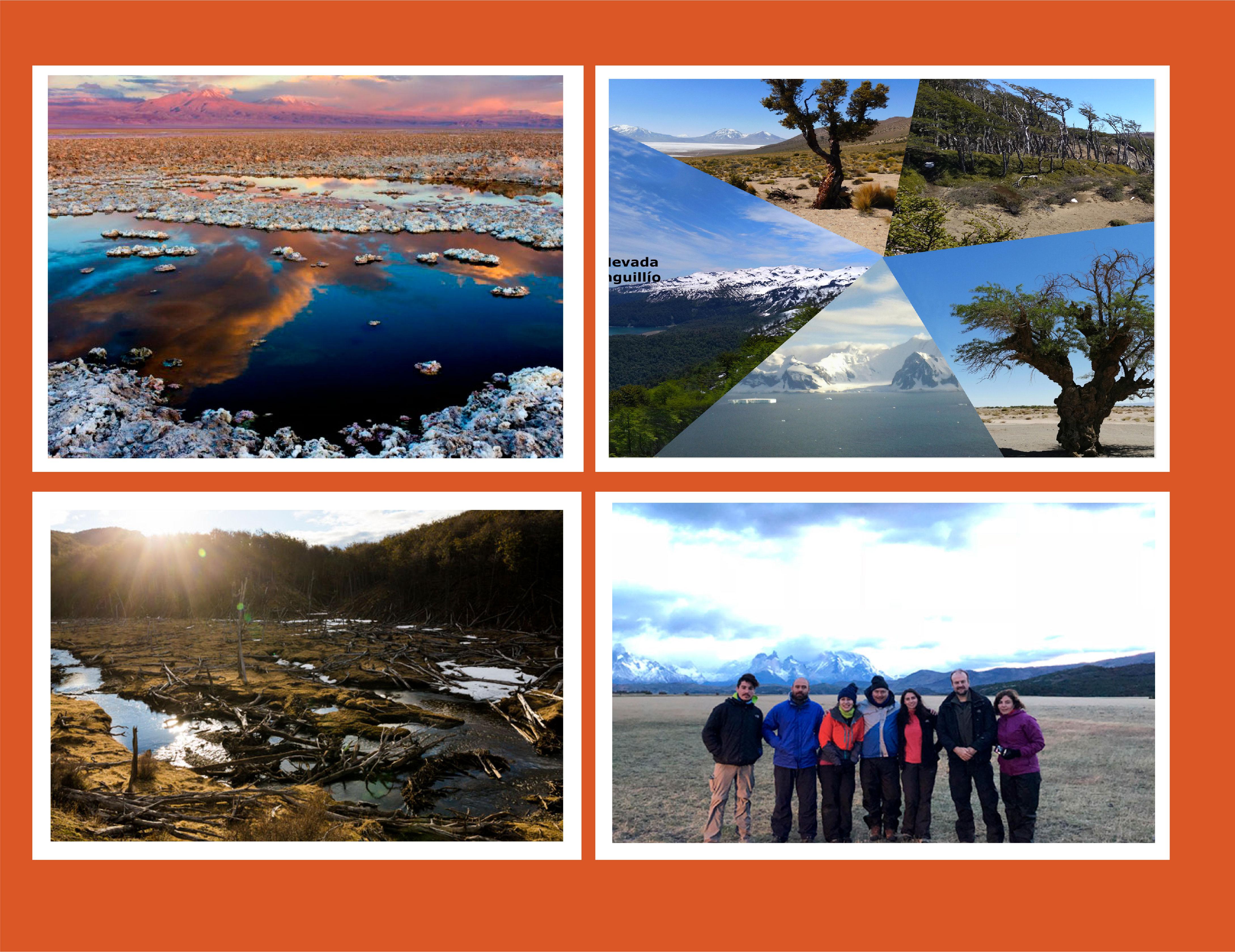Universidades de Magallanes, La Frontera y de Antofagasta proyectan crecimiento de Red de Investigación en Ambientes Extremos NEXER